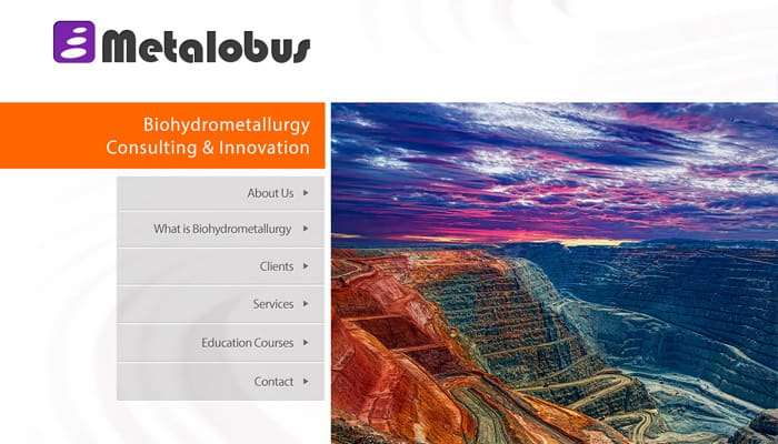 metalobus Biohydrometallurgy Consulting & Innovation